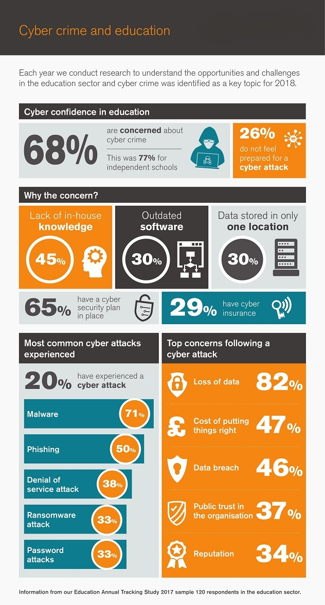 Cyber crime and education infographic