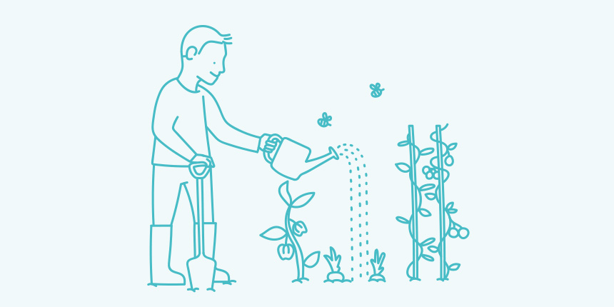 Watering vine illustration