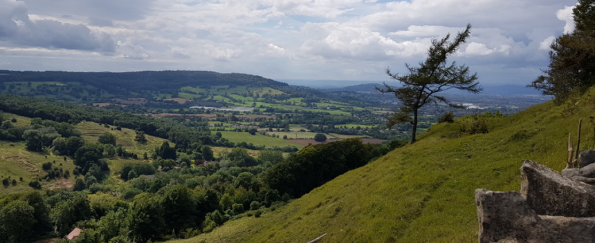 Picture of a hill view from the Wiggly Worm charity walk